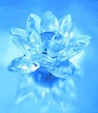 цветок диаманта Стоковые Изображения