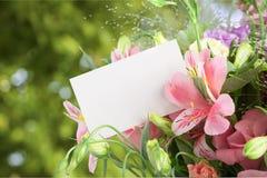 цветок дня дает матям сынка мумии к Стоковые Фотографии RF