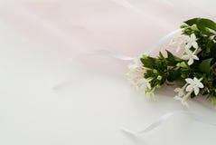цветок довольно Стоковая Фотография RF