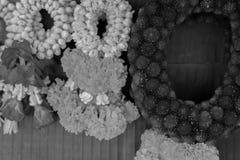 Цветок жасмина гирлянды Стоковое Фото