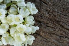Цветок жасмина на старой деревянной предпосылке Стоковое фото RF