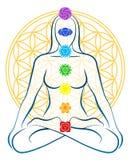 Цветок женщины Chakras жизни иллюстрация вектора