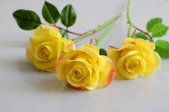 Цветок желтых роз глины на белой предпосылке Стоковые Изображения RF