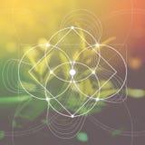 Цветок жизни - блокировать объезжает старый символ перед запачканной photorealistic предпосылкой природы священнейше Стоковые Фотографии RF