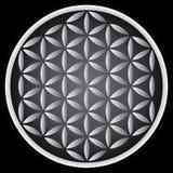 Цветок жизни Стоковое фото RF