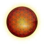 Цветок жизни pandant Стоковое фото RF