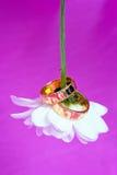 цветок звенит венчание Стоковые Фото