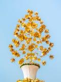 Цветок золота стальной в белом изоляте бака Стоковые Изображения