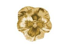 Цветок золота Стоковые Фото