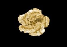 Цветок золота Стоковая Фотография RF