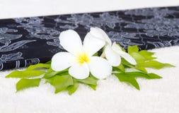 Цветок и лист Leelawadee на белом towe Стоковая Фотография RF