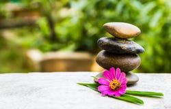 Цветок и камень Стоковая Фотография RF