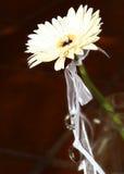 Цветок и обручальные кольца на ленте Стоковое Изображение RF