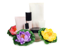 Цветок и сливк Стоковое Фото