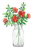Цветок иллюстрации акварели в простой предпосылке Стоковые Фото