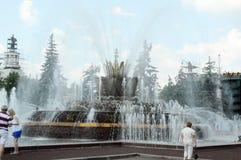 Цветок камня фонтана field вал жара moscow стоковые изображения