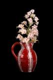 Цветок каштана лошади в вазе Стоковое Изображение