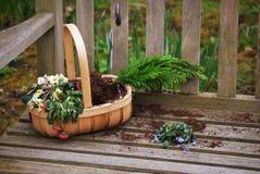 цветок корзины стоковое фото