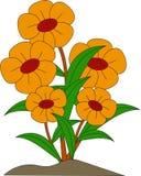 Цветок красоты желтый иллюстрация вектора