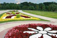 цветок кроватей Стоковые Фото