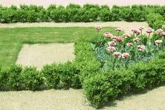 цветок кровати геометрический Стоковое Изображение RF