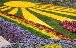цветок кровати Стоковые Изображения RF