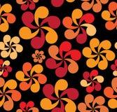 цветок круга Стоковое Изображение RF