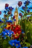 Цветок Лондон большого Бен Стоковые Изображения