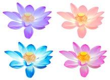 Цветок лотоса собрания красочный для украшает изолированный Стоковая Фотография