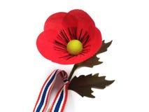 Цветок мака на тайский день ветеранов Стоковые Фото