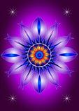 Цветок мандалы зацветая Стоковые Фото