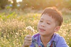 Цветок мальчика дуя отсутствующий весной Стоковые Фотографии RF