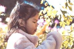 Цветок милой азиатской девушки маленького ребенка пахнуть в саде Стоковые Изображения