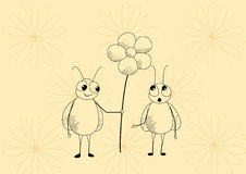 цветок мух Стоковые Фотографии RF