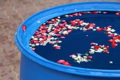 Цветок на воде Стоковые Изображения