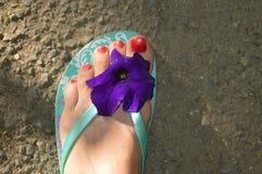 Цветок на ноге Стоковая Фотография