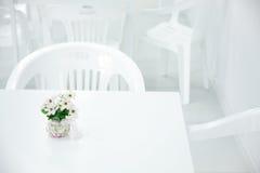 Цветок на таблице Стоковое Фото
