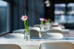 Цветок на таблице Тюльпан в фуд-корт вазы публично Буфет школы украшенный с цветками Стоковые Изображения RF