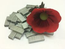 Цветок на штапелях Стоковые Фото