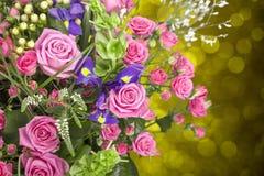 цветок дня дает матям сынка мумии к Стоковые Изображения