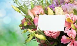 цветок дня дает матям сынка мумии к Стоковые Фото