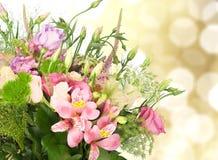 цветок дня дает матям сынка мумии к Стоковое Изображение