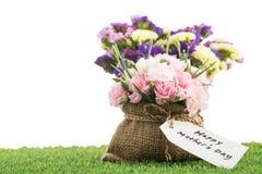 Цветок дня матерей с зацветая цветками гвоздики Стоковое Изображение RF