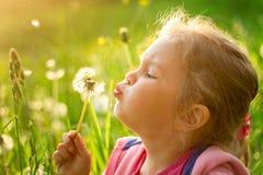 Цветок одуванчика девушки дуя отсутствующий весной Стоковое Фото