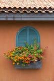 Цветок окна Стоковое Фото