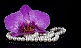 Цветок орхидеи при шарики сделанные от жемчугов на черной предпосылке Стоковые Фото