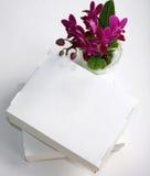 Цветок орхидеи и белые коробки на белой предпосылке Стоковая Фотография RF