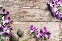 Цветок орхидеи на древесине Стоковая Фотография