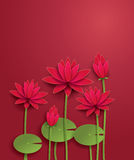Цветок лотоса вектора иллюстрация вектора