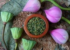 Цветок лотоса собрания, семя, чай, здоровая еда Стоковое фото RF